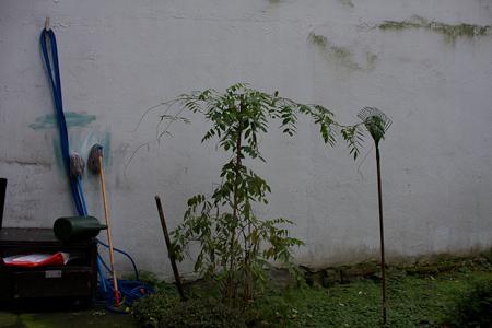 Workshop Documentaire Fotografie Lotte Niks
